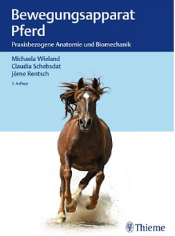 Bewegungsappart Pferd.PNG