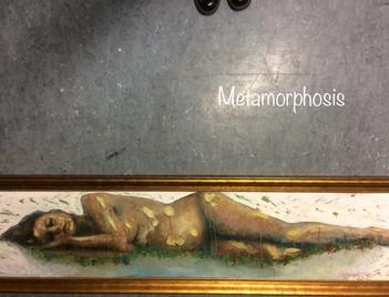 Metamorphosis, t.jpg