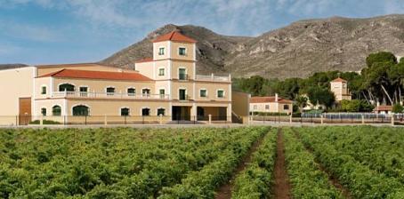 Como escolher um vinho orgânico sem ser um expert