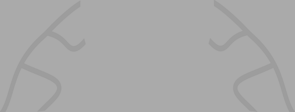blank banner (1).png
