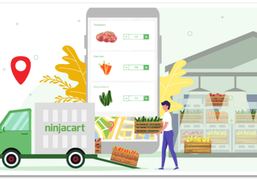 Is Flipkart trying to strengthen its e-grocery arm by investing in NinjaCart?