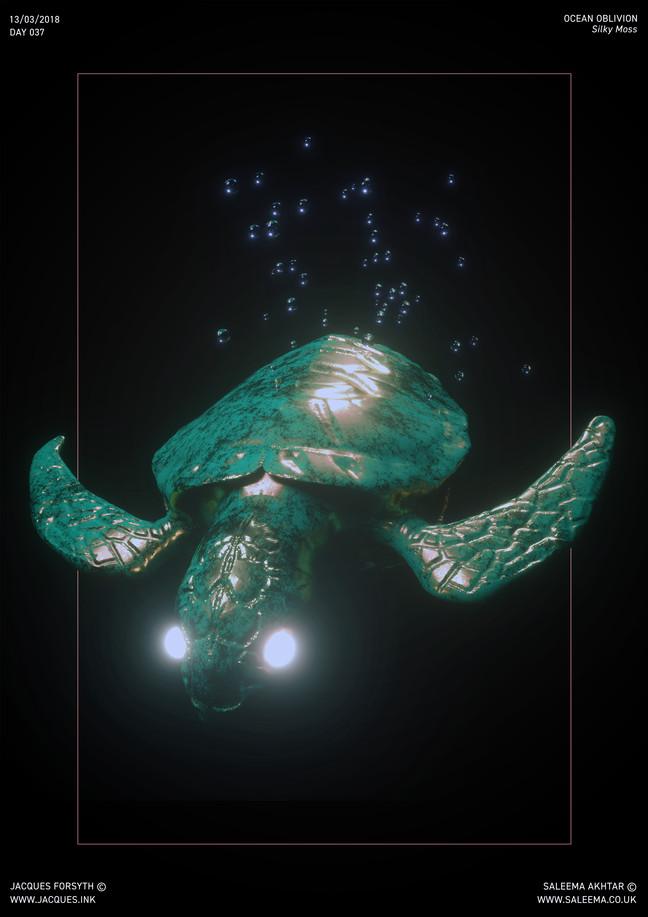 TurtleSmall.jpg