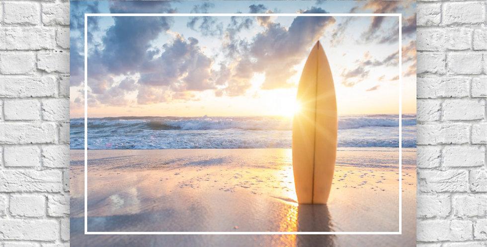 Qd SURF III