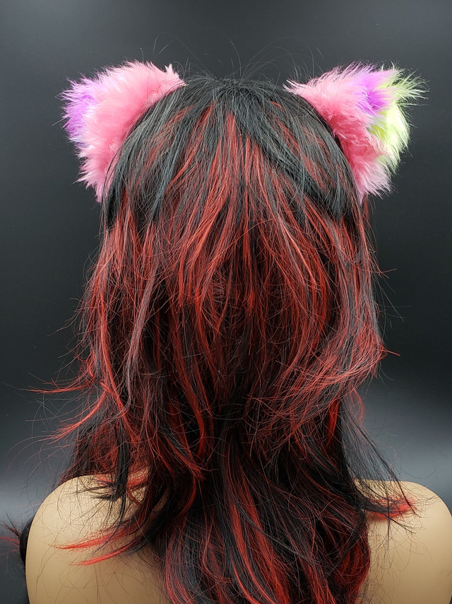Multicolored cat ears