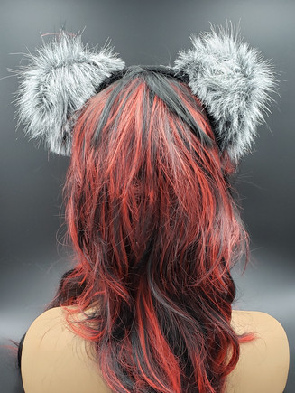 Gray cat ears