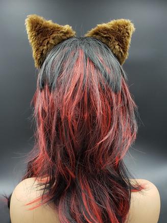 Brown cat ears