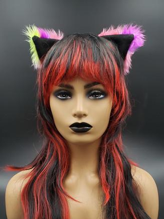 Multicolored cat ears