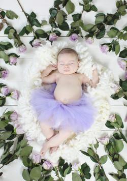 violet3mon3