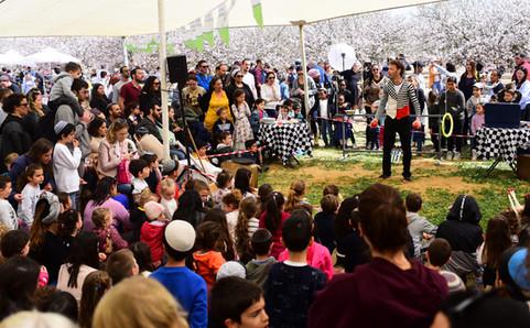 מופע מרכזי בפסטיבל