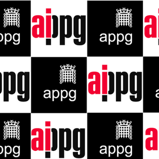 Evidence Meeting |All Party Parliamentary Group on AI 2020