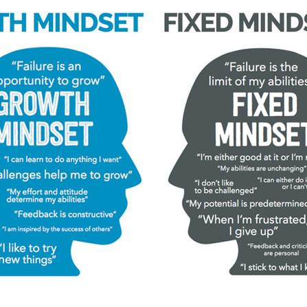 The Growth Mindset — Mindset For Success