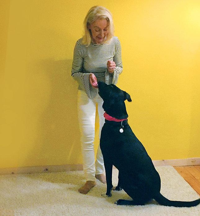 Schwarzer Hund susanne.jpg