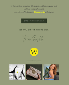 wylde email2.png