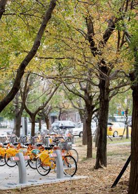 [發表] 「文化綠廊街角、水景廣場」啟用