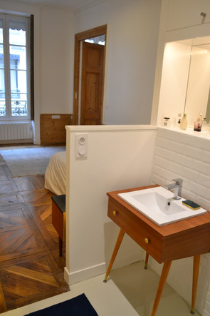 Rénovation appartement Ainay