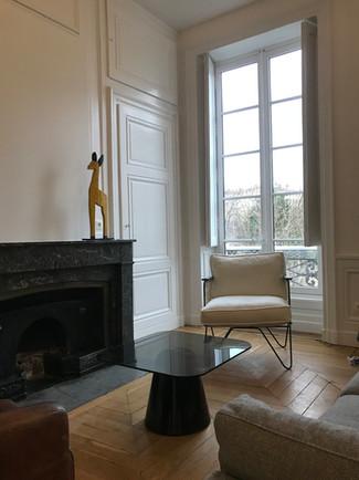 Rénovation_salon_Lyon_1.jpeg