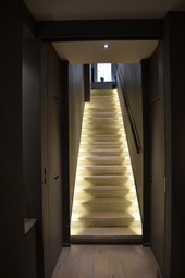 Rénovation d'un Hotel Particulier à Lyon 6 ème