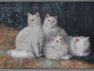 Cats Really Do Have Nine Lives