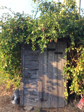 Vintage Outhouse