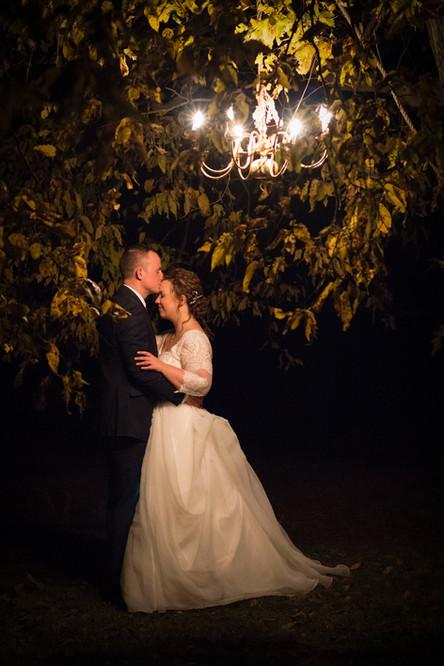 Romantic Tree Chandelier