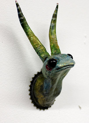 Hortensus curiosa