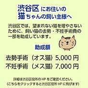 jyosei.jpg