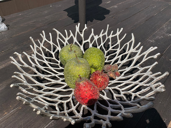White Washed Metal Coral Centerpiece/Fruit Bowl