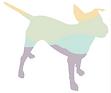 dog pink dog.png