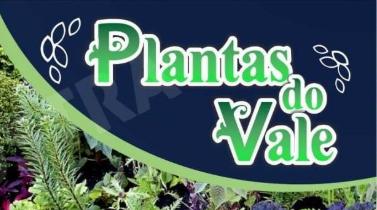 PLANTAS DO VALE