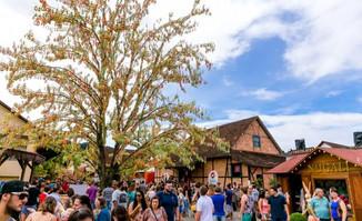 Maior árvore de Páscoa do mundo começa a ser montada em Pomerode