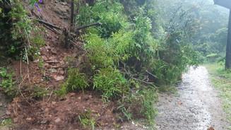 Defesa Civil registra ocorrências por conta das chuvas
