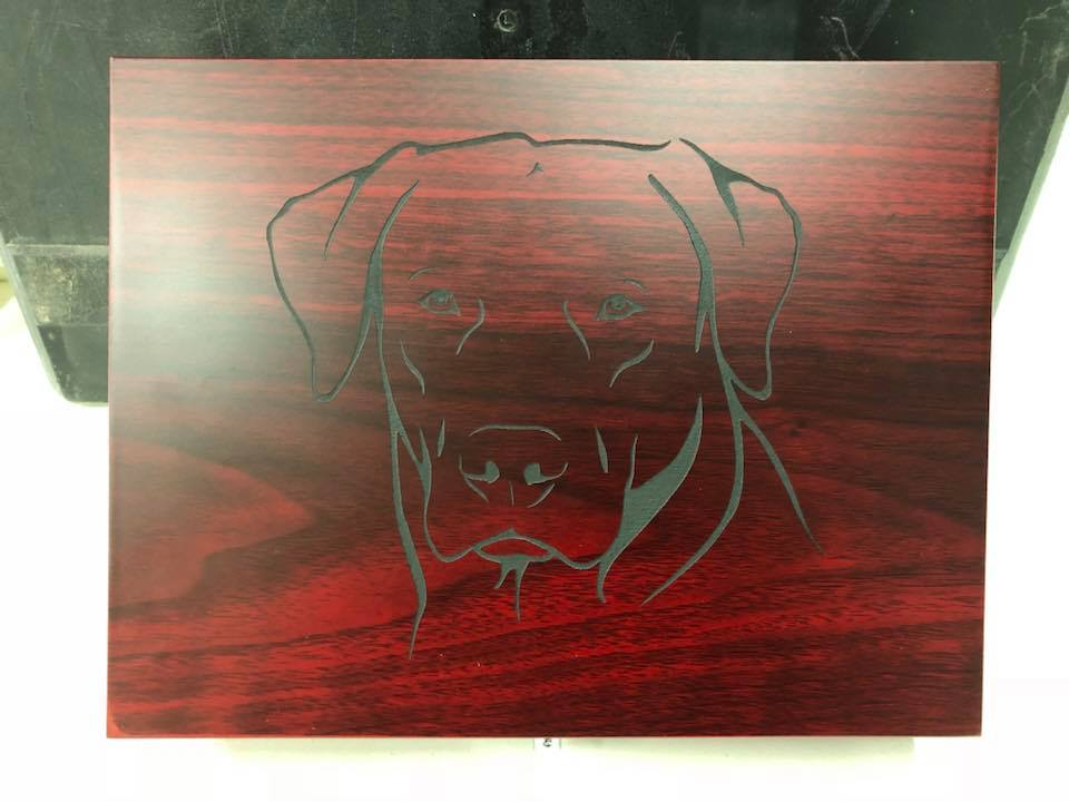 Lab engraved shot case