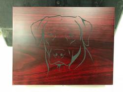 Lab engraved shot case