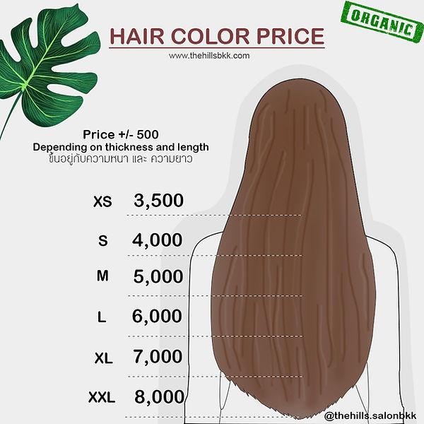 hair color price.jpg
