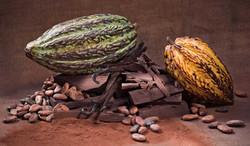 cacaobonen-chocolade