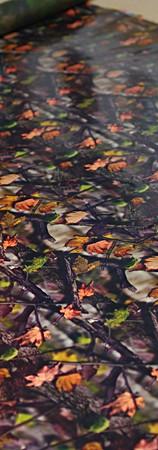 Autumn Leaves Camo