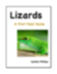 lizards cover Ju 13 jpg.jpg