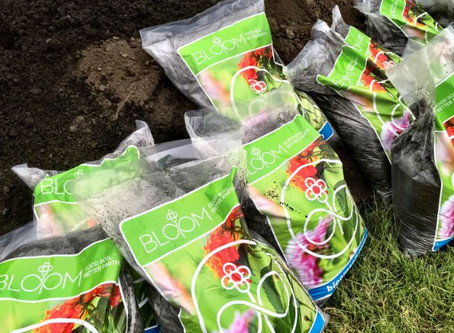 DC turning wastewater solids into gardeners compost