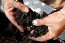 """Biosolids - being resourceful with a valuable """"waste""""?"""