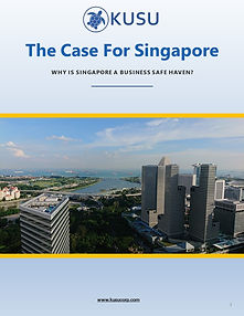 Singapore Business Safe Haven Ebook.jpg