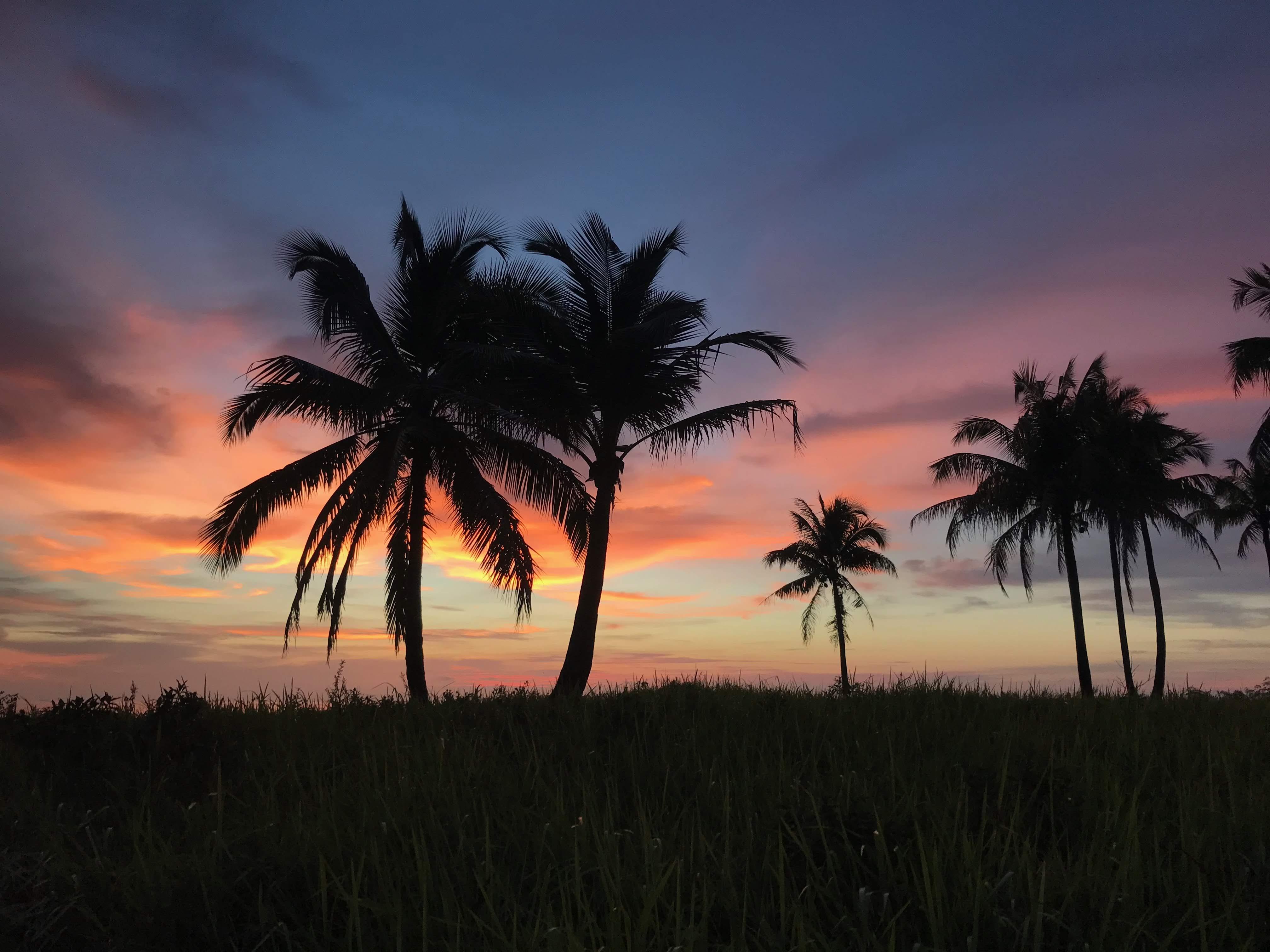 Nature: Sunset 2
