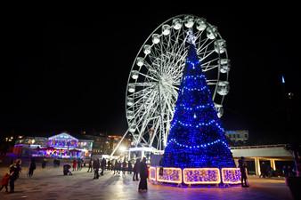 St Petersburg Tree and Big Wheel.jpg