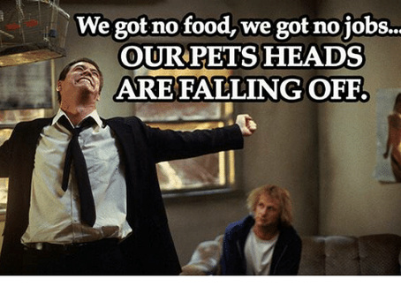 We got no food… we got no jobs… our pets heads are falling off!