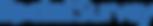 SocialSurvey-Logo-1.png