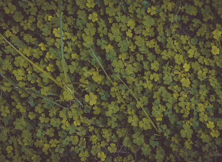 Around the horn… or considering the month maybe it's around the clover?