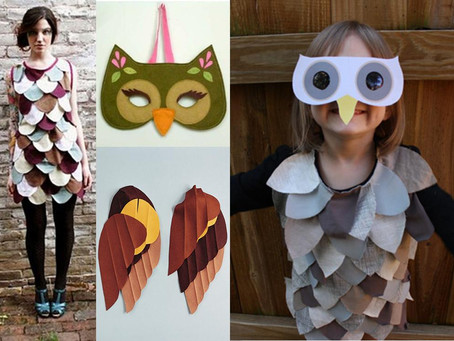 INSPIRATION | Owl Costume