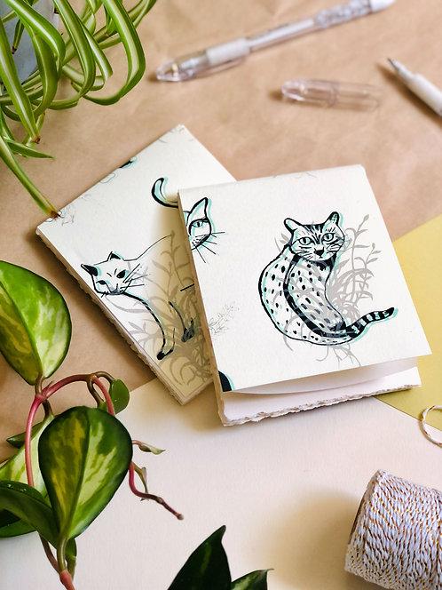 Cats | Notebook