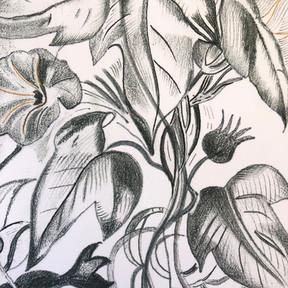 Pencil Floral {5x7} $24