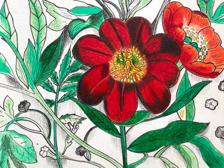 Fantastical Menagerie - coloring - in.....dream