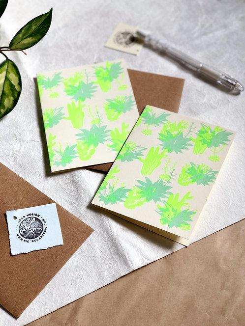 Patterns Greeting Cards - Box Set